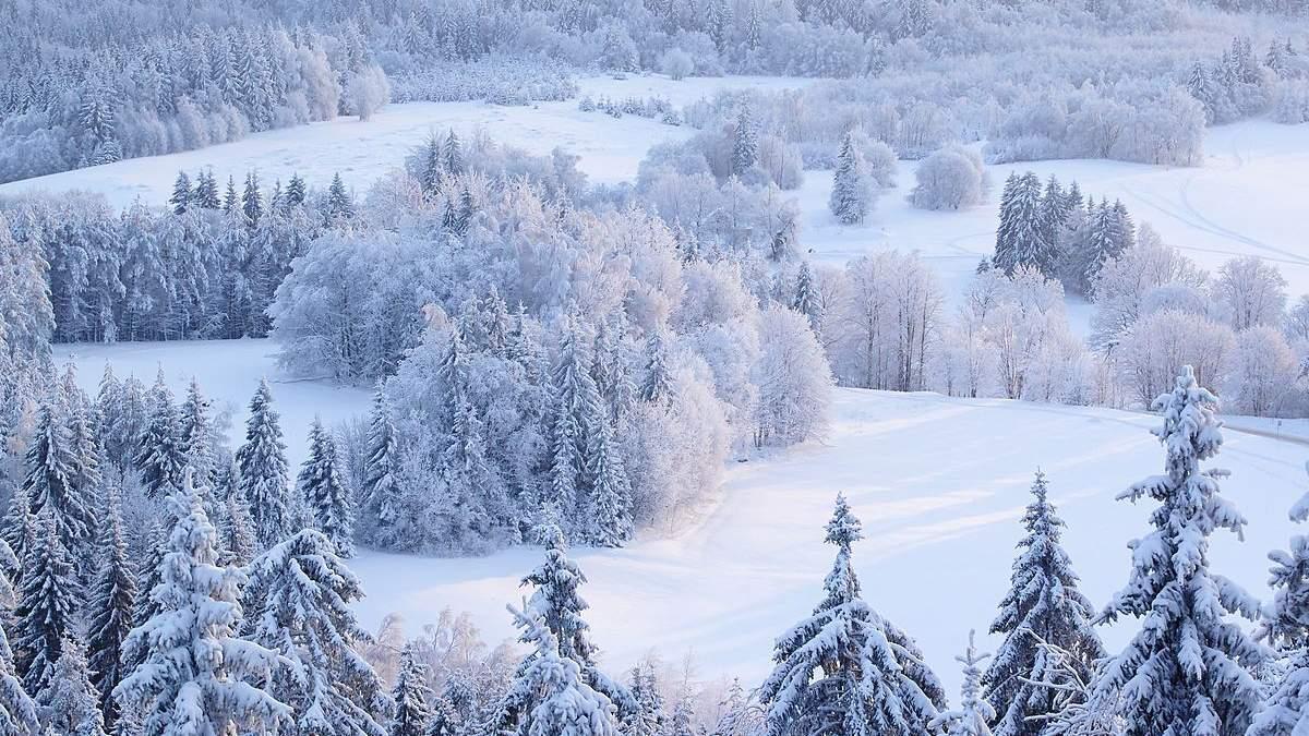 31 декабря 2020 – какой праздник и что нельзя делать