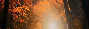 Зустрічаємо осіннє рівнодення-2021: топ цікавих ритуалів свята