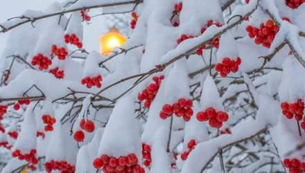 11 січня – яке сьогодні свято та що не можна робити в цей день