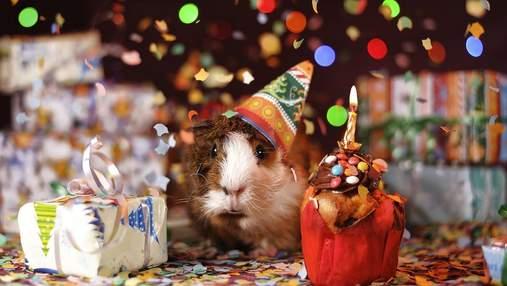 С днем рождения: красивые поздравления в прозе и стихах
