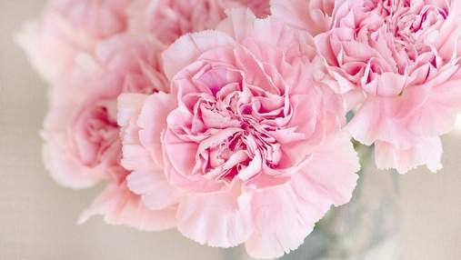 День Ангела Татьяны: красивые картинки-поздравления