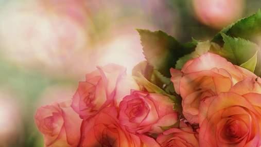 День Ангела Ксении: самые милые картинки-поздравления