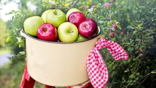 Отмечаем Яблочный Спас: что известно об истории праздника и его традициях