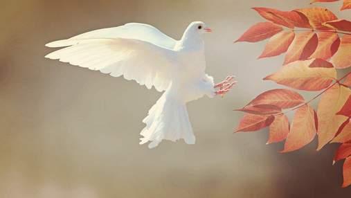 Усікновення глави Івана Предтечі: щирі картинки-привітання зі святом