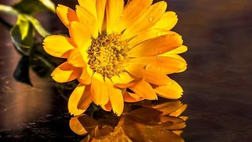 20 вересня – яке сьогодні свято та що не можна робити в цей день